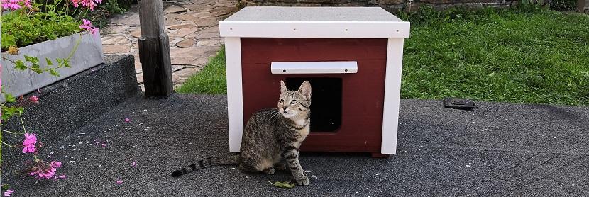 Katzenhaus.shop - Katzenhaus kaufen