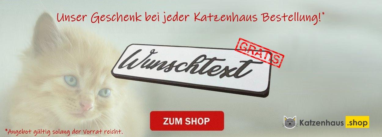 Katzenhaus Isoliert Gratis Namensschild