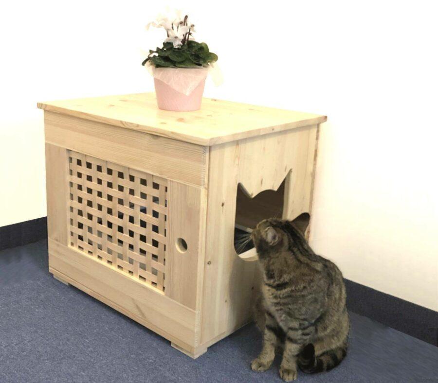 Katzenklo, Katzenschrank aus Holz