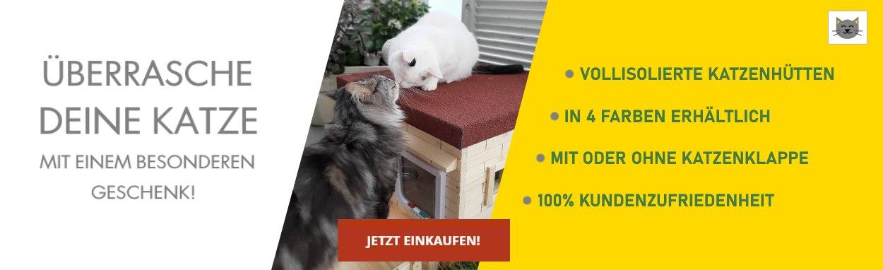 Katzenhaus Shop Titelbild 2021