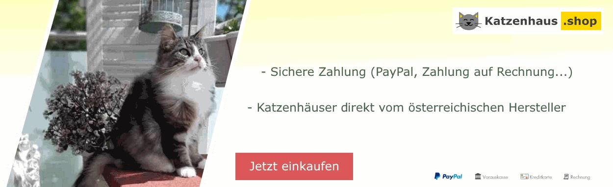 Katzenhaus Shop Titelbild